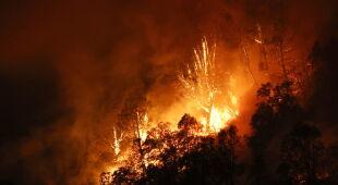 Pożary śmiertelnym zagrożeniem w Kalifornii (PAP/EPA)