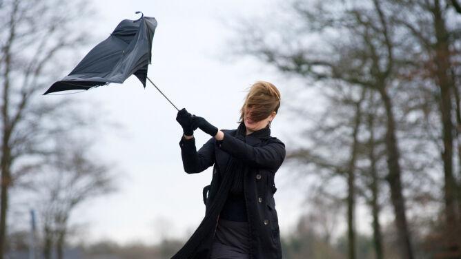 Prognoza pogody na dziś: wiatr może powodować zniszczenia. Będzie też padać